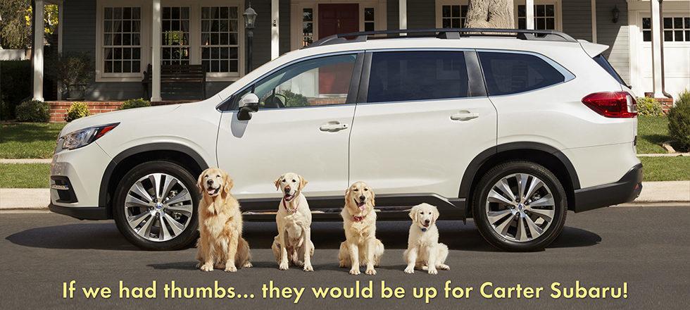 Subaru Dealership Seattle >> Carter Subaru